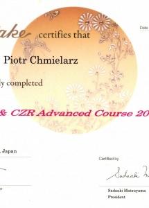 certyfikat-20136